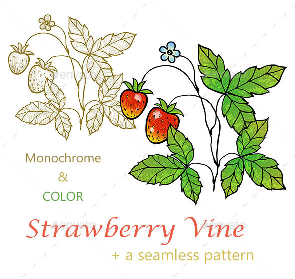 GraphicRiver Strawberry Vine with Berries 10438772