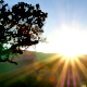 Setting Sun - VideoHive Item for Sale