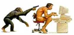 Image Evolution