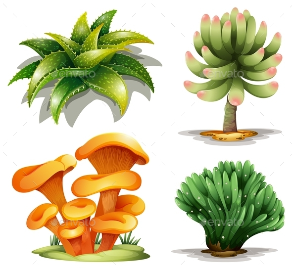 GraphicRiver Different Plants 10475752