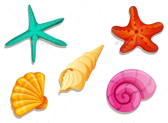 GraphicRiver Colourful Seashells 10485670