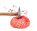 Human brain rubber with hammer blow and blood spill - PhotoDune Item for Sale