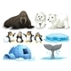 Animals with Signboards - GraphicRiver Item for Sale