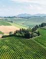 Rural Italian landscape in Tuscany - PhotoDune Item for Sale