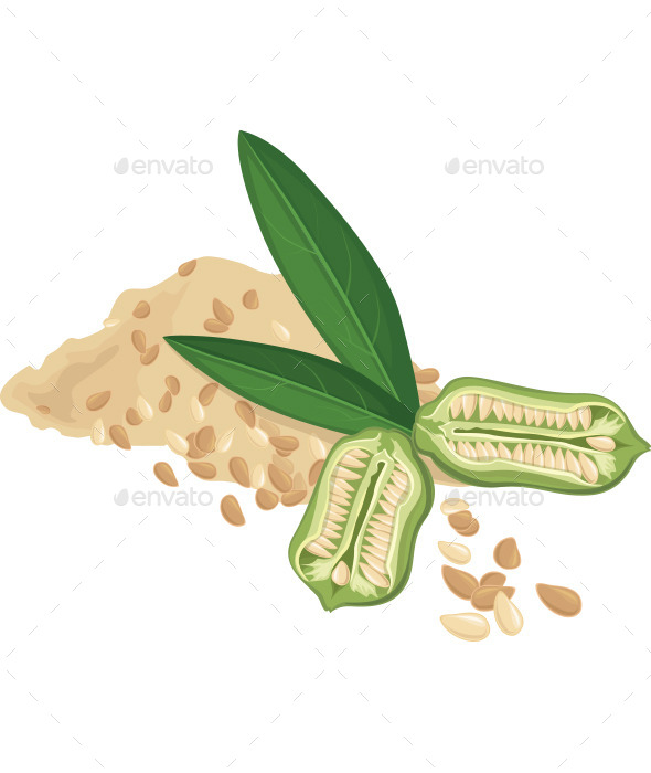GraphicRiver Sesame Seeds and leaves 10199066