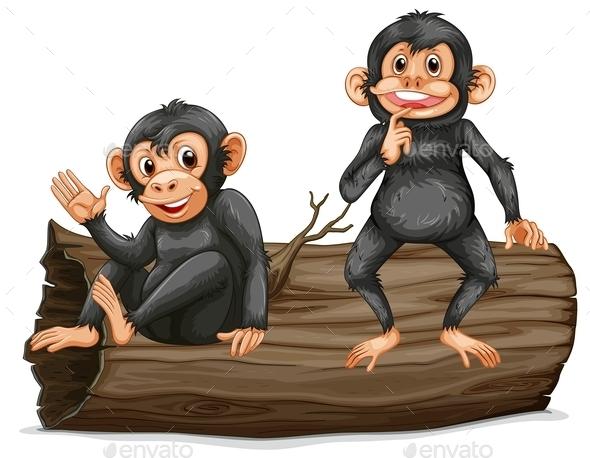 GraphicRiver Chimpanzee 10494894
