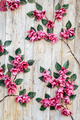 Flowers on Wooden Background - PhotoDune Item for Sale