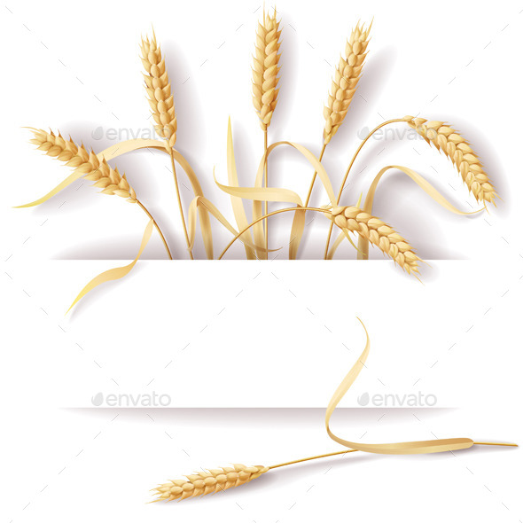GraphicRiver Wheat Ears 10498265