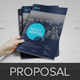 Project & Business Proposal Template v3 - GraphicRiver Item for Sale