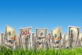 One hundred dollar banknotes growing from green grass. Money - PhotoDune Item for Sale
