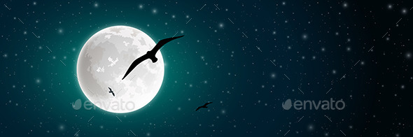 GraphicRiver Moon and Bird 10500425