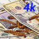Money and Worms (Economic Concept) - VideoHive Item for Sale