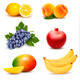 Big Group of Different Fruit. Vector.  - GraphicRiver Item for Sale