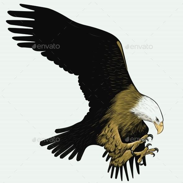 GraphicRiver Bald Eagle 10507702