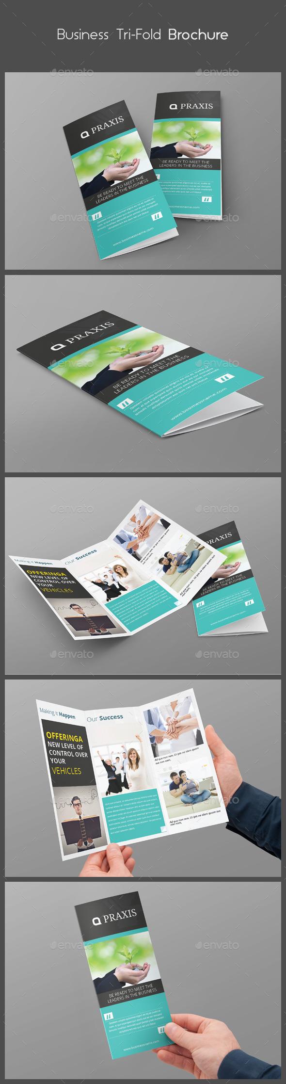 GraphicRiver Business Tri-Fold Brochure 10509079