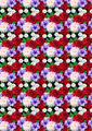 Motley Seamless Background with Roses Dahlias Asters - PhotoDune Item for Sale