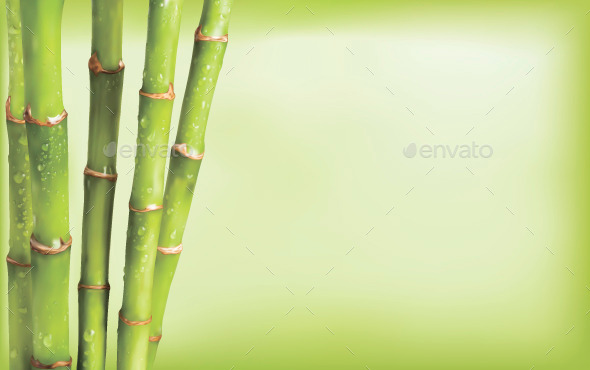 GraphicRiver Bamboo Background 10509856