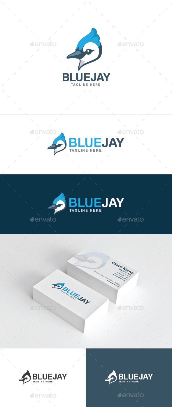 GraphicRiver Blue Jay 10510921