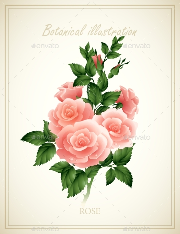 GraphicRiver Flower Illustration 10512826