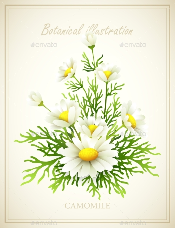 GraphicRiver Flower Illustration 10512829