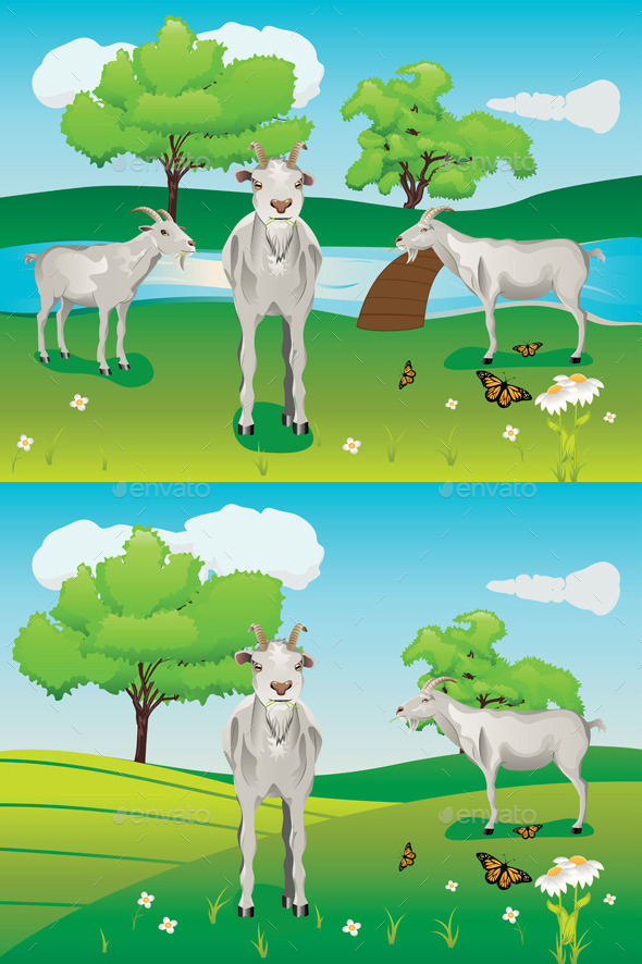 GraphicRiver Goats and Green Lawn 10517827