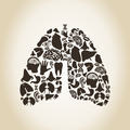 Lungs - PhotoDune Item for Sale