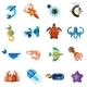 Sea Creatures Set - GraphicRiver Item for Sale