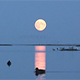 Moon over Still Lake - VideoHive Item for Sale