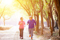 happy Senior Couple Exercising In the Park - PhotoDune Item for Sale