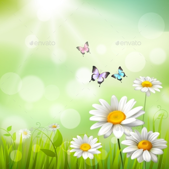 GraphicRiver Daisies Summer Background 10526667