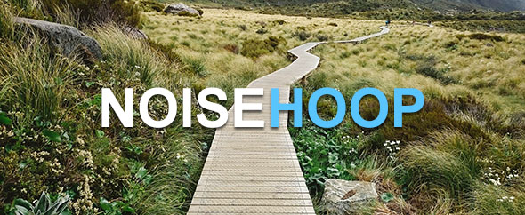 NoiseHoop