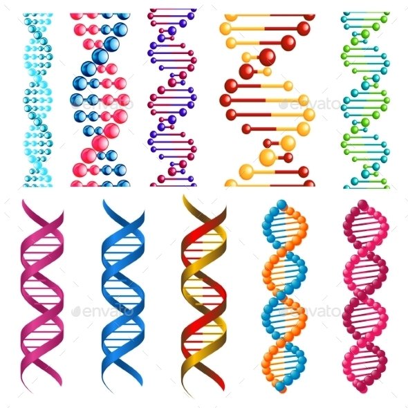 GraphicRiver Colorful DNA Molecules and Cells 10527815