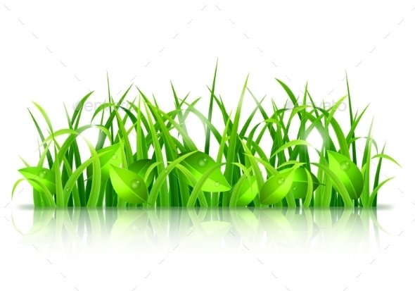 GraphicRiver Green Grass and Leaves 10531926