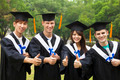 happy students in graduation gowns showing diplomas with thumbs - PhotoDune Item for Sale