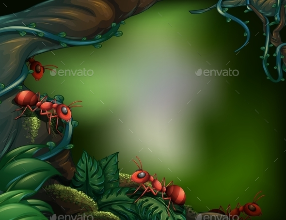 GraphicRiver Ants in Forest 10536499