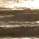 Golden Ocean Waves - VideoHive Item for Sale