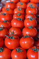 Fresh Red Ripe Tomatoes - PhotoDune Item for Sale