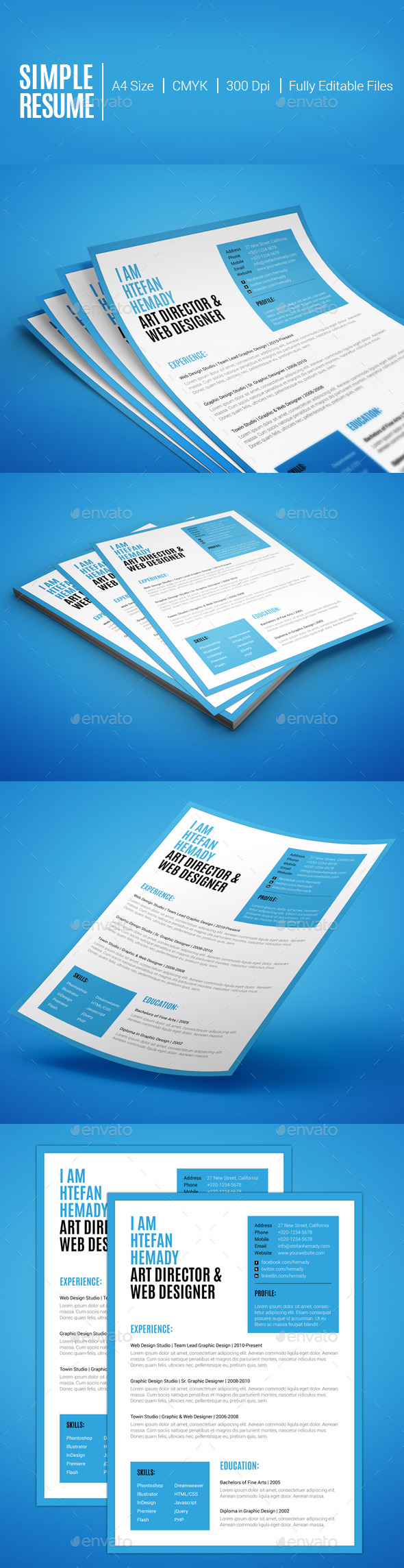 GraphicRiver Simple Resume 10539561