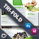 Real Estate Tri-Fold Templates - GraphicRiver Item for Sale