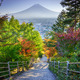 Stairway to Mt. Fuji Fujiyoshida, Japan - PhotoDune Item for Sale