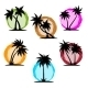 Palm Silhouette Color Set - GraphicRiver Item for Sale
