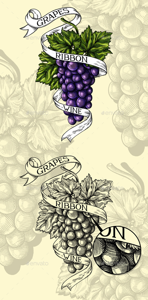 GraphicRiver Illustration engraving Grapes Ribbon Wine 10546245