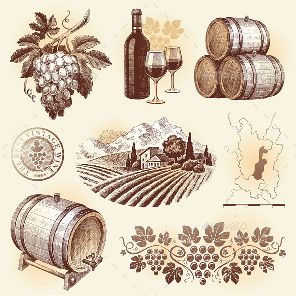 GraphicRiver Wine and Winemaking Hand Drawn Set 10549504