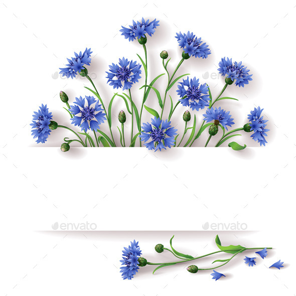 GraphicRiver Blue Cornflowers 10550888