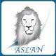 TeamAslan3