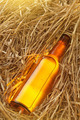 Beer bottle in the stack of hay - PhotoDune Item for Sale