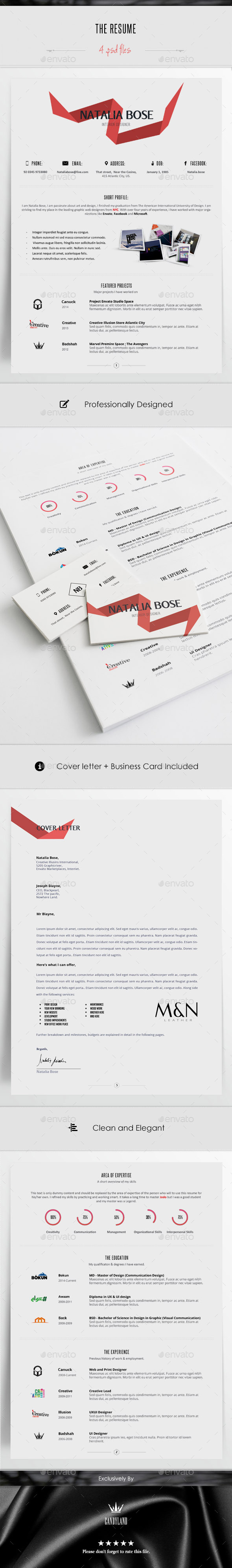 GraphicRiver The Resume 10491316