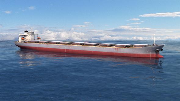 3DOcean Ship Capesize Aqua Fortune 10560255