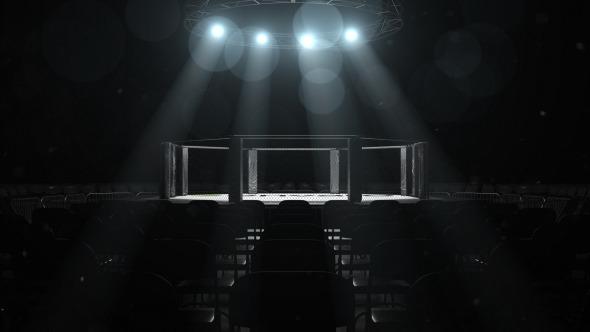 MMA Logo Sting