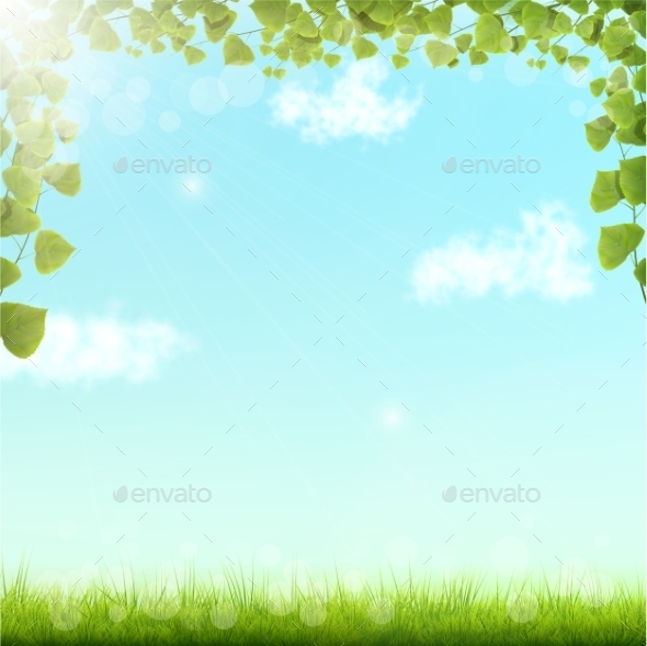 GraphicRiver Green Leaves on Blue Sky Background 10574567